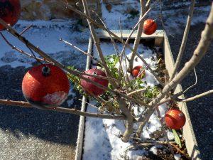 Καιρός Χριστουγέννων: Κρύο, χιόνια και πολύ χαμηλές θερμοκρασίες