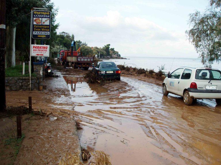 Μεσσηνία: Ζημιές σε δρόμους και καλλιέργειες | Newsit.gr