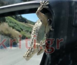 Κρήτη: Κοίταξε τον καθρέφτη του αυτοκινήτου που οδηγούσε και είδε αυτές τις εικόνες [pics]