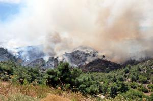 Σητεία: Υπό έλεγχο η φωτιά στον Ξερόκαμπο – Σε επιφυλακή οι πυροσβέστες!