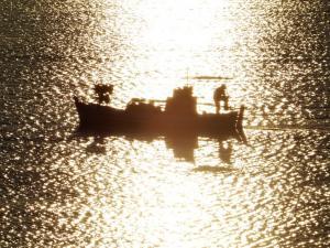 Ρόδος: Τα δίχτυα του ψαρά έκρυβαν μια εικόνα που δεν θα ξεχάσει ποτέ – Όλα όσα προηγήθηκαν!