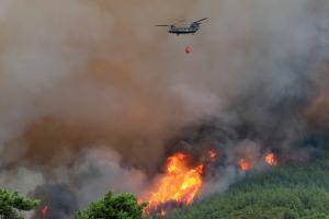 Έβρος: Υπό έλεγχο η δασική φωτιά στην περιοχή Κίρκη – Διαπιστώθηκε η αιτία που την προκάλεσε!