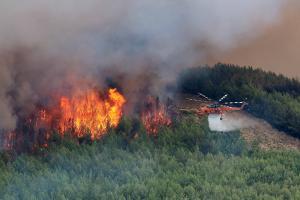 Σουφλί: Μαίνεται η φωτιά στη Λευκίμη – Εκδηλώθηκε από κεραυνό που έπεσε στην περιοχή!