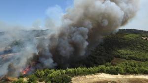 Καίγεται η Μεσόγειος: Ποιος ευθύνεται για τις μεγάλες πυρκαγιές