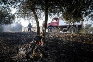 Φωτιά στην Αττική: Κλιμάκια της Περιφέρειας ξεκινούν αυτοψίες στους πληγέντες