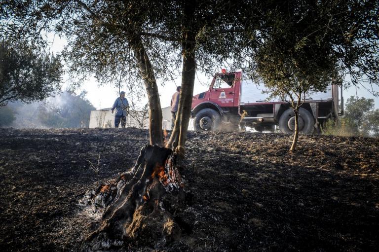 Φωτιά στην Αττική: Κλιμάκια της Περιφέρειας ξεκινούν αυτοψίες στους πληγέντες | Newsit.gr