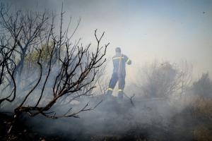 Ηλεία: Έσβησε η φωτιά – Σε επιφυλακή οι πυροσβέστες