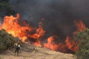 Εκκενώθηκε πόλη στην Καλιφόρνια λόγω μεγάλης πυρκαγιάς [pics, vids]