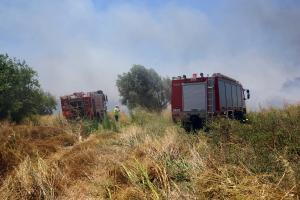 Μυτιλήνη: Μεγάλη φωτιά στην περιοχή του Καρά Τεπέ
