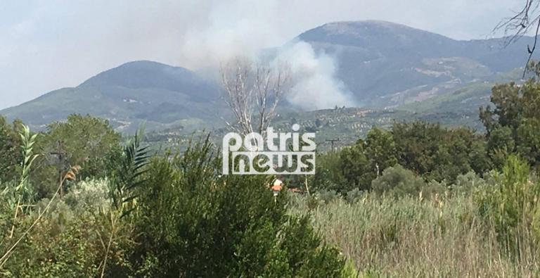 Ολονύχτια μάχη με τις φλόγες στα Ροδινά Ηλείας – Δεν απειλούνται κατοικημένες περιοχές [pics, vids] | Newsit.gr