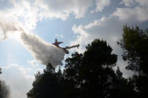 Φωτιά στις Λίμνες Αδαμίου στην Αργολίδα