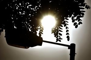 Φονικός καύσωνας στην Κύπρο – Δύο νεκροί σε 24 ώρες