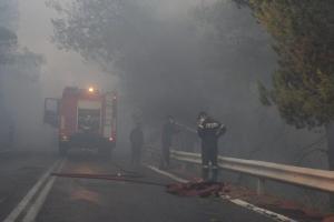 Φωτιά στην Αττική: Μάχη με το χρόνο – Σε χαράδρα στο Καπανδρίτι το κύριο μέτωπο