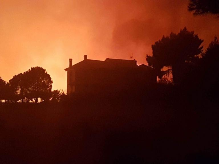 Φωτιά στην Αττική : Μάχη όλη τη νύχτα – Απειλήθηκαν σπίτια- Καλύτερη εικόνα με το πρώτο φως της ημέρας | Newsit.gr