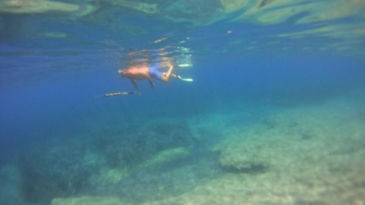 Νεκρός ψαροντουφεκάς στη Χαλκιδική! Τον χτύπησε ταχύπλοο και πέθανε από αιμορραγία | Newsit.gr