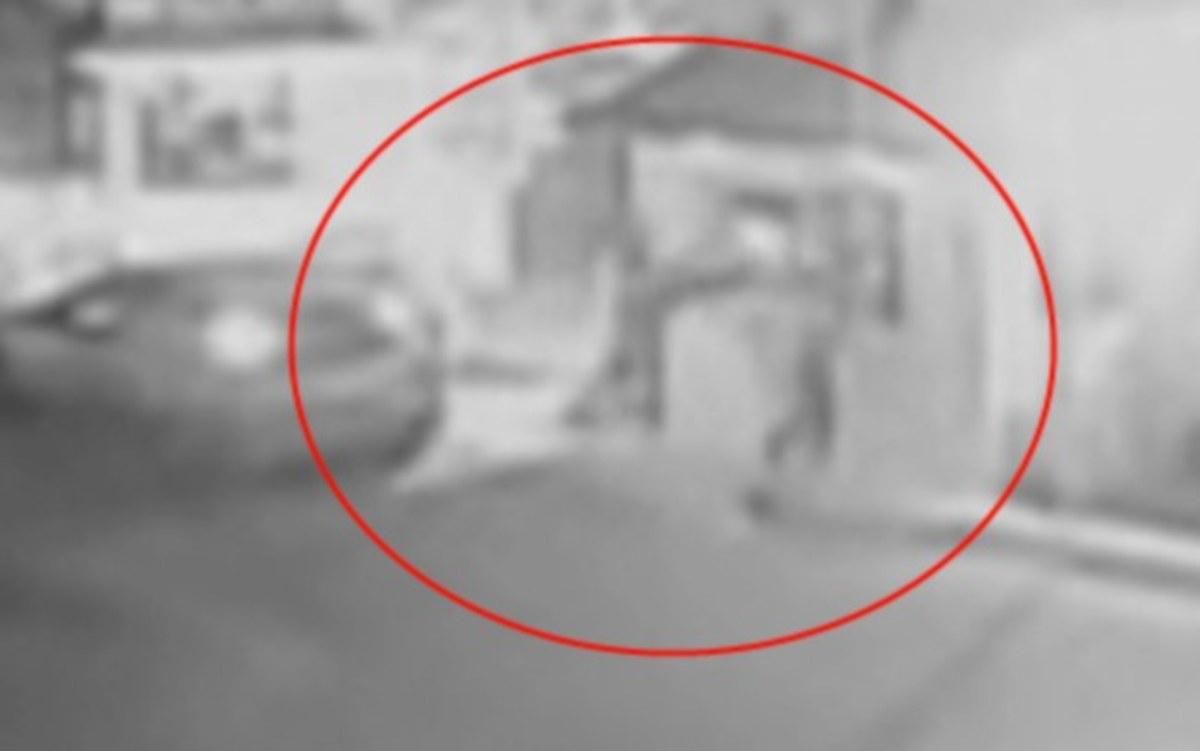Εύβοια: Το βίντεο ντοκουμέντο της επίθεσης ληστών σε μεγάλη πτηνοτροφική μονάδα [vid] | Newsit.gr