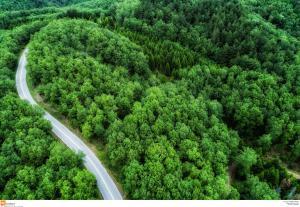 Δασικοί χάρτες: Έρχεται νεα παράταση – Τι αναφέρει η νεα τροπολογία
