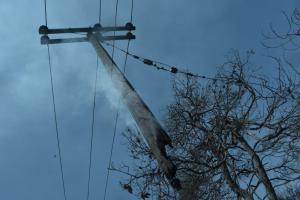 Φωτιές στην Αττική: Τι θα γίνει με την ηλεκτροδότηση στις πληγείσες περιοχές
