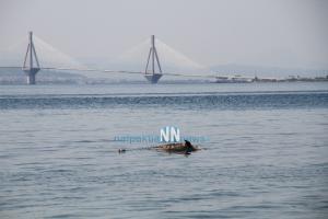 Θλιβερή εικόνα σε παραλία της Ναυπάκτου: Βρήκαν νεκρό δελφίνι [pics, vid]