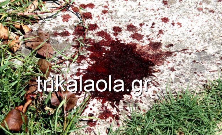 Αδελφοκτονία στα Τρίκαλα: Πήγαν περπατώντας σπίτι, στάζοντας αίμα! Σοκάρουν οι αποκαλύψεις   Newsit.gr