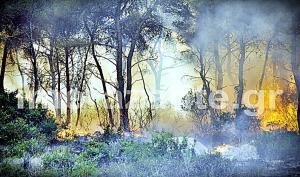 Φωτιά στη Ζάκυνθο: Προσεύχονται για μια καλύτερη νύχτα