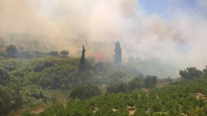 """Μυτιλήνη: Έσβησε η μεγάλη πυρκαγιά στον Καρά Τεπέ – """"Μαύρισε"""" ο τόπος"""