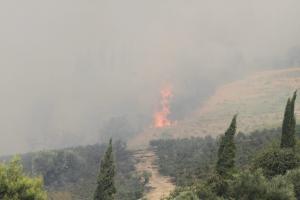 Φωτιά στην Ηλεία: Εντολή για εκκένωση του Περιστερίου – Αρνούνται οι κάτοικοι