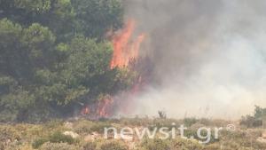 Φωτιά στην Αττική: Συγκλονιστικές εικόνες από τον πύρινο εφιάλτη