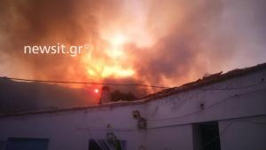 Πύρινη κόλαση! Κάηκαν σπίτια στη Μάνη – Φωτιές σε Φθιώτιδα και Βοιωτία [pics]