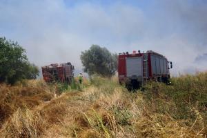 Υπό μερικό έλεγχο η φωτιά στο Στόμιο Ιεράπετρας