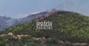 Μεγάλη φωτιά στην Ηλεία – Κινδύνευσε ηλικιωμένη
