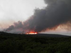 Φωτιές: Το ευχαριστώ της Αλβανίας στην Ελλάδα