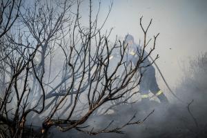 Φωτιές στην Αττική: Στημένα ρεπορτάζ καταγγέλει ο Πάνος Σκουρλέτης