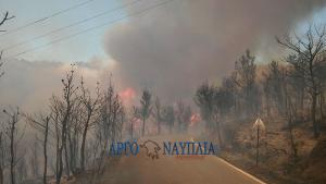 Φωτιά στις Σπέτσες: Δύσκολη νύχτα με φλόγες και δυνατό αέρα