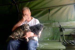 Χάρβεϊ: Τα άλλα θύματα του τυφώνα – Αμέτρητες εκκλήσεις για τη διάσωση ζώων [pics]