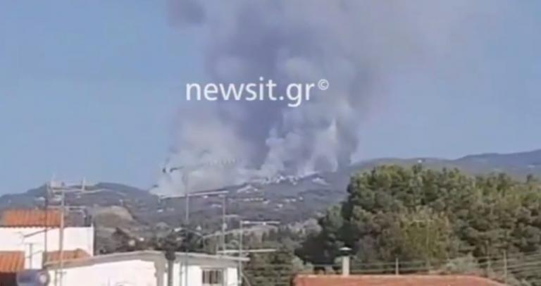 Φωτιά ΤΩΡΑ στον Κάλαμο! Τεράστια σύννεφα καπνού! [pics] | Newsit.gr