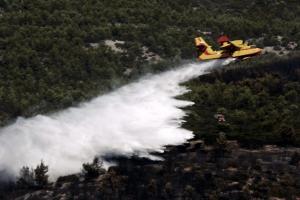 Φωτιά στην Αττική: Κάηκαν 39.000 στρέμματα σύμφωνα με το Εθνικό Αστεροσκοπείο!
