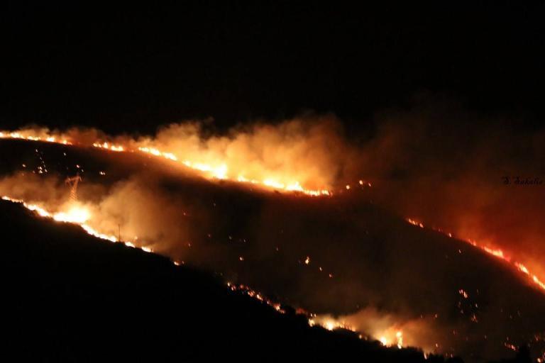 Φωτιά ΤΩΡΑ στην Κεφαλονιά! Εκκενώνονται σπίτια [pics, vids] | Newsit.gr