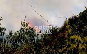 Φωτιά στην Ηλεία: Τραυματίστηκε γυναίκα πυροσβέστης
