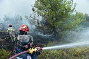 Φωτιές στον Μαραθώνα – Εμπρησμό που συνδέεται με τον Κάλαμο «βλέπουν» οι αρχές
