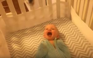 Μωρό βλέπει γάτα για πρώτη φορά! [vid]