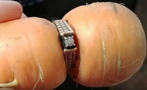 13 χρόνια μετά βρήκε το χαμένο δαχτυλίδι αρραβώνων της σε… καρότο