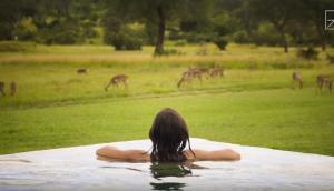 Σαφάρι δίχως να κουνηθείς μέσα από την πισίνα!