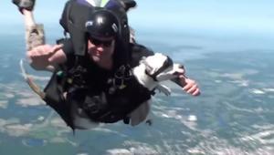 Κάνει skydiving με τον σκύλο του… [vid]
