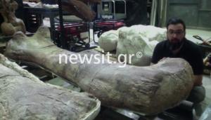 Δεινόσαυρος Παταγοτιτάν: Το μεγαλύτερο πλάσμα που περπάτησε στη Γη!