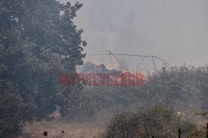 Φωτιά στην Πρέβεζα: Στάχτη εργοστάσιο και θερμοκήπια – Μάχη με τις φλόγες [vid]