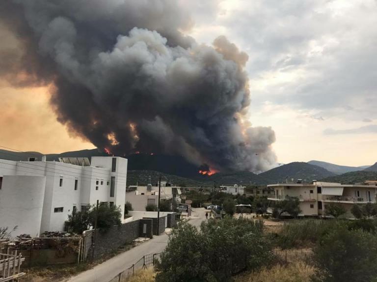 Φωτιά στο Σοφικό Κορινθίας: Δυσκολεύει το έργο της κατάσβεσης – Ενισχύονται οι πυροσβεστικές δυνάμεις [pic, vid] | Newsit.gr
