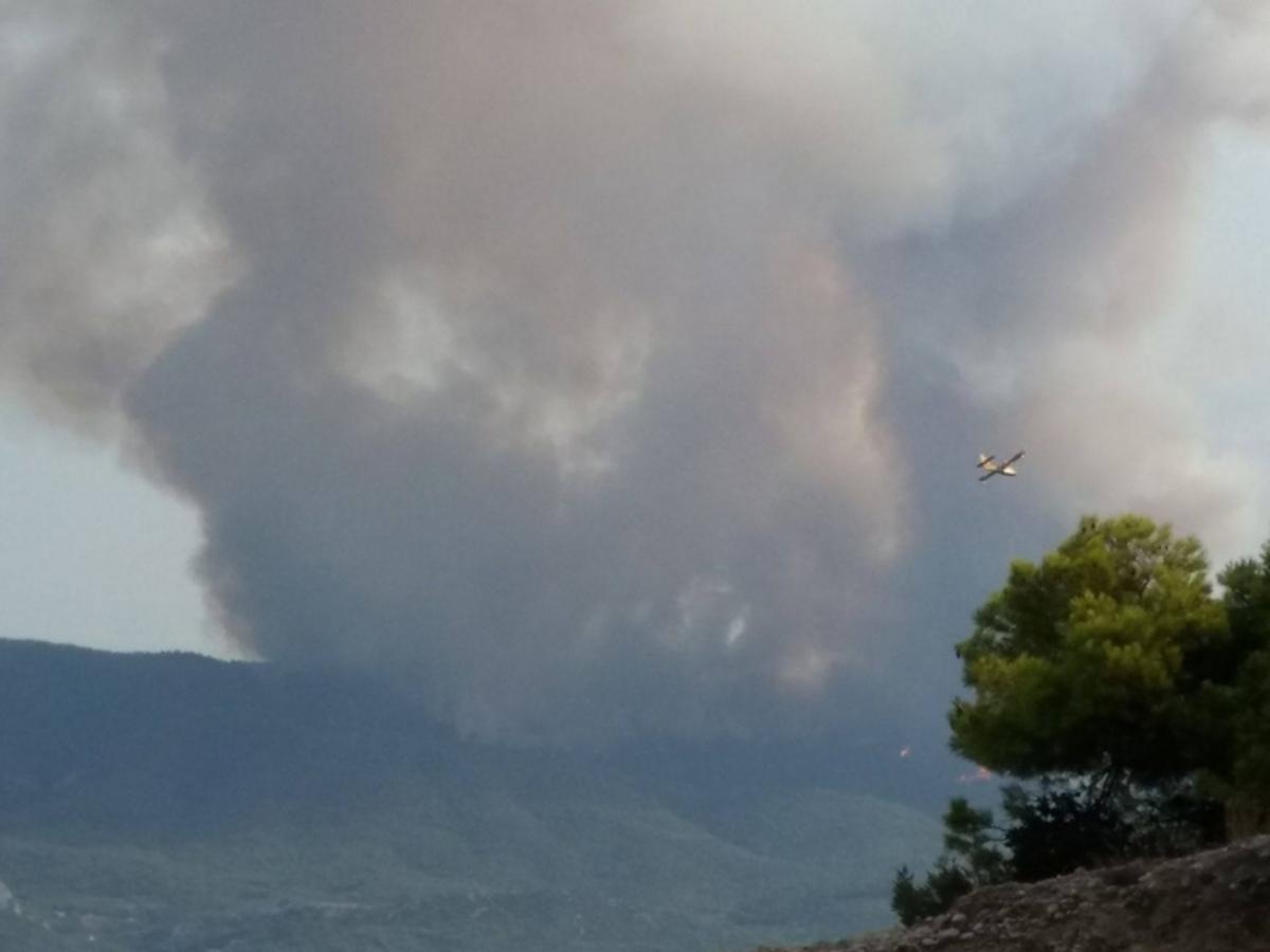 Φωτιά στο Σοφικό: «Μάχη» με τις φλόγες για δεύτερη ημέρα   Newsit.gr