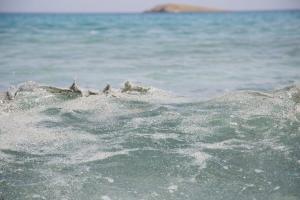 Κρήτη: Πνίγηκε ηλικιωμένη στην Παλαιοχώρα