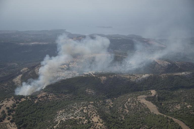 Φωτιά ΤΩΡΑ στην Θάσο | Newsit.gr